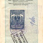 Austria – visa, 1929 thumbnail