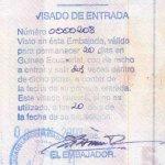 travels to Equatorial Guinea